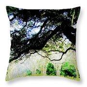 Live Oak At Capitol Lakes Park Throw Pillow