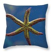 Live Starfish Throw Pillow