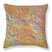 Living Candida Albicans Throw Pillow