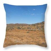 Living Desert Throw Pillow