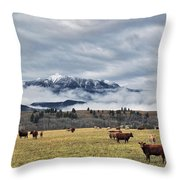Livingstone Range And Pastureland Throw Pillow by Darwin Wiggett