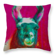 Llama Of A Different Color Throw Pillow