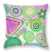 Lm Of Fossilized Diatoms Throw Pillow
