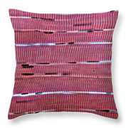 Lm Of Skeletal Muscle Throw Pillow