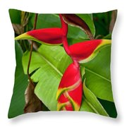 Lobster Claw Heliconia Throw Pillow
