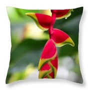 Lobster Claws Throw Pillow
