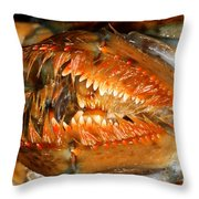 Lobster Mouth Throw Pillow