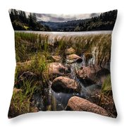 Loch Ard From The Reed Beds Throw Pillow by John Farnan