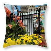 Lock 3   Throw Pillow