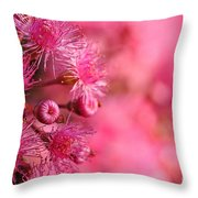 Lollypop Gum Tree Blossoms Throw Pillow