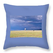 Lone Buffalo 2 Throw Pillow