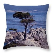 Lone Cypress By The Sea Throw Pillow