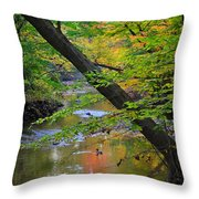 Lone Duck Throw Pillow