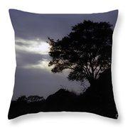 Lone Oak 1 Throw Pillow