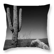 Lone Saguaro Throw Pillow