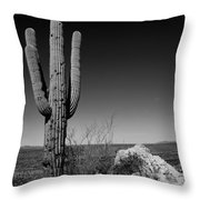Lone Saguaro Throw Pillow