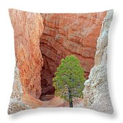 Lone Tree At Bryce National Park Throw Pillow