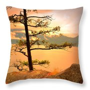 Lone Tree At Ellison Park Throw Pillow