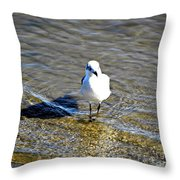Lone Wader Throw Pillow