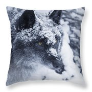 Lone Wolf In Snow Throw Pillow