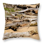 Lonely Driftwood Throw Pillow