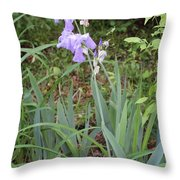 Lonely Gladiola Throw Pillow