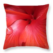 Lonely Teardrop Throw Pillow