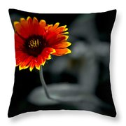 Lonely Tears Throw Pillow
