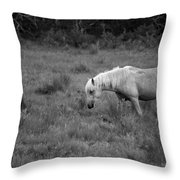Lonesome Pony Throw Pillow