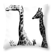 Long And The Short Throw Pillow
