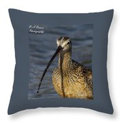 Long-billed Curlew Portrait Throw Pillow