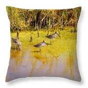 Long Billed Dowitchers Migrating Throw Pillow