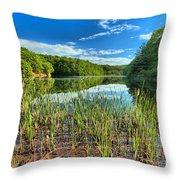 Long Branch Lake Marsh Throw Pillow by Adam Jewell