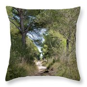 Long Forest Road Throw Pillow