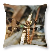 Long Tailed Skimmer 8695 3318 Throw Pillow