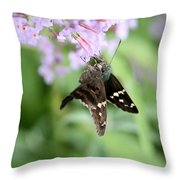 Long Tailed Skipper - Urbanus Proteus Throw Pillow
