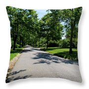 Long Walk Ahead Throw Pillow