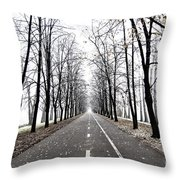 Long Way Throw Pillow