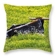Longhorn Bull Throw Pillow