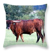 Longhorn Of Texas Throw Pillow