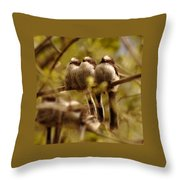 Longtailed Tit Fledglings Throw Pillow