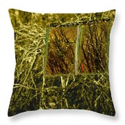 Look And Seek Throw Pillow