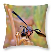 Look In To My Eyes Throw Pillow