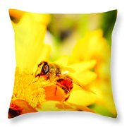 Look Me In The Eye  Throw Pillow
