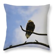 Look Up At The Eagles Throw Pillow