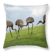 Look What I Found Throw Pillow by Carol Groenen