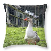 Lookin South Throw Pillow