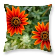 Looking Alike Throw Pillow