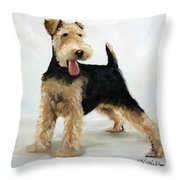 Looking For Fun Throw Pillow