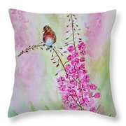 Looking For Seeds Throw Pillow